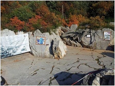 Il sito paleontologico del pi grande e completo dinosauro for Piano del sito piscina